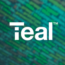 TEAL Technology Services ( IBM & OCP Joint Venture)