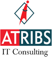 ATRIBS IT Consulting